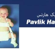 پاولیک هارنسPavlik Harness
