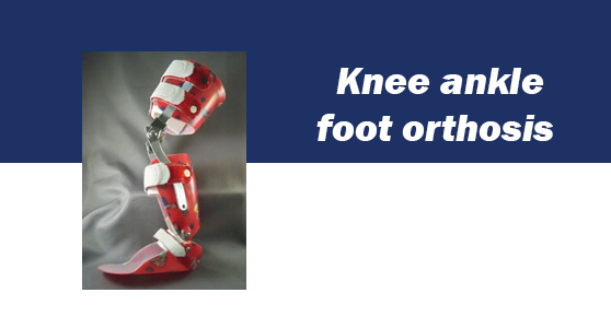 کافو کودکانKnee ankle foot orthosis  مشخصات : ارتوز KAFO با ایجاد ثبات در مفصل زانو و انکل به راه رفتن کودکان مبتلا به فلج مغزی، میلومننگوسل وکلیه فلج حسی و حرکتی اندام تحتانی کمک می کند. اندیکاسیون:  ایجاد ثبات در مفصل زانو اصلاح کنتراکچر مفصل زانو اصلاح کوتاهی عضلات اصلاح دفورمیتی های زانو